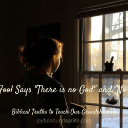 A foolish thing to say - The fool says