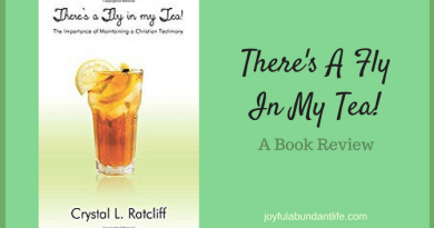 A book on working on your Christian Testimony by getting the stinky flies out that might be marring your testimony for Christ.
