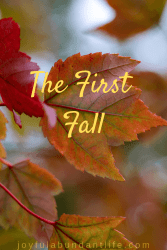 The First Fall - do you know what God says about the first fall?