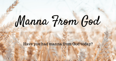 """Have you had manna from God today? When God sent the Israelites food in the wilderness, they said """"What is it""""? They were blessed to receive the food they needed every single day while wandering in the wilderness. And although they didn't know what it was, God told them what it was. It was there provision and they were to gather enough for themselves each day except the Sabbath in which case, God made sure the manna carried over for that day. It was their daily portion that would give them complete satisfaction."""