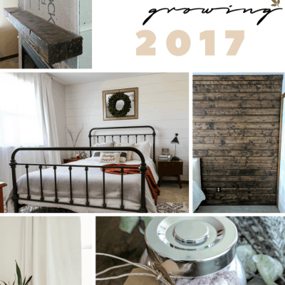 The Best of Joyfully Growing Blog 2017