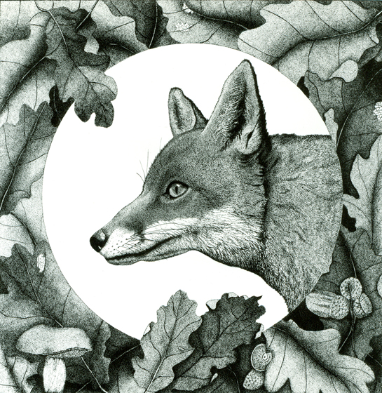 Red Fox Pointillism by Cathy Connolley