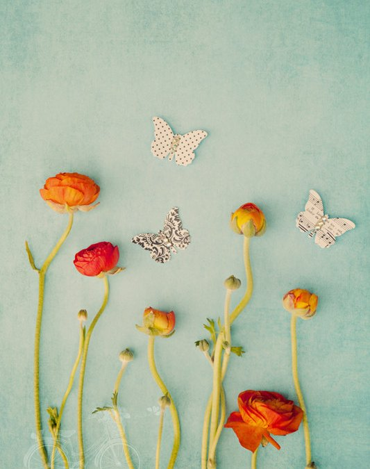 Paper Butterflies in a Ranunculus Garden {Inspirational Image Friday}