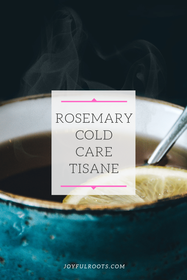Rosemary Cold Care Tisane, Rosemary for Health, Rosemary Tea Recipe