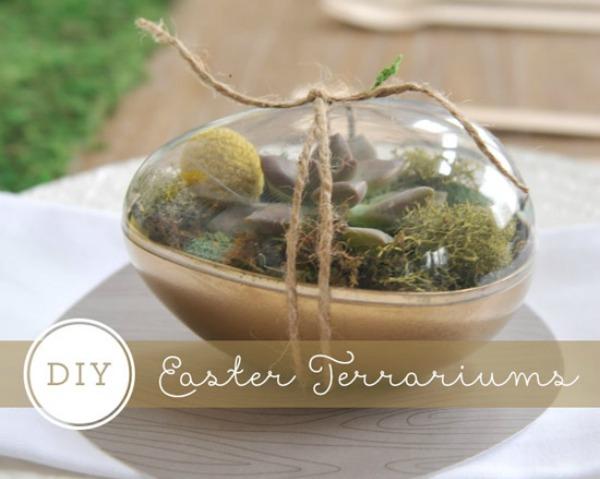 #DIY Easter Egg Succulents