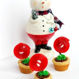 funky & festive flowerpot cookies