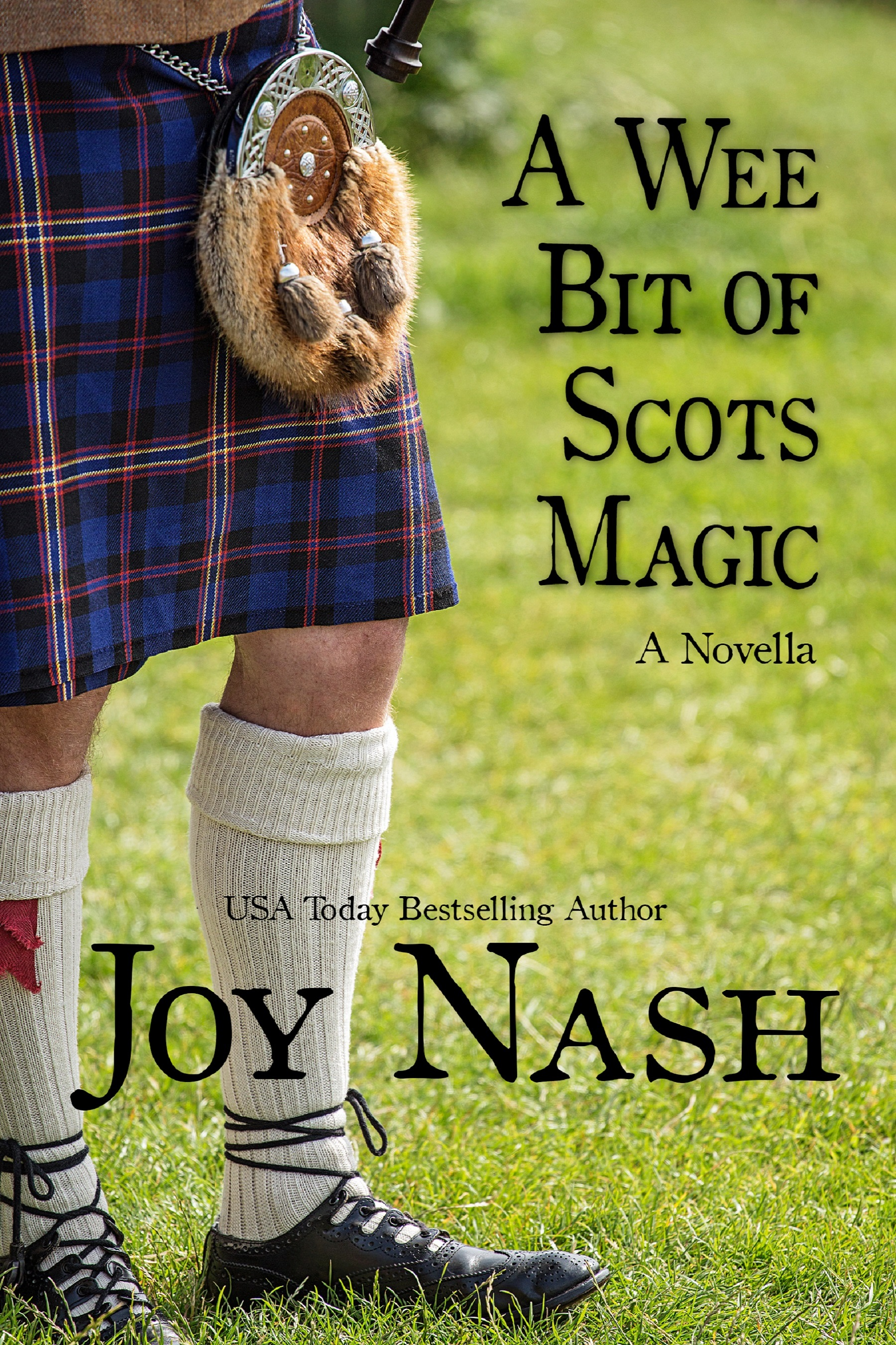 WeeBitofScotsMagic_cover_3.9MB