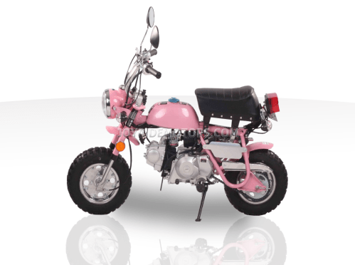 small resolution of spider monkey 110cc mini bike for sale