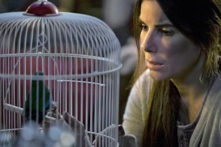 Sandra Bullock Birds Bird Box