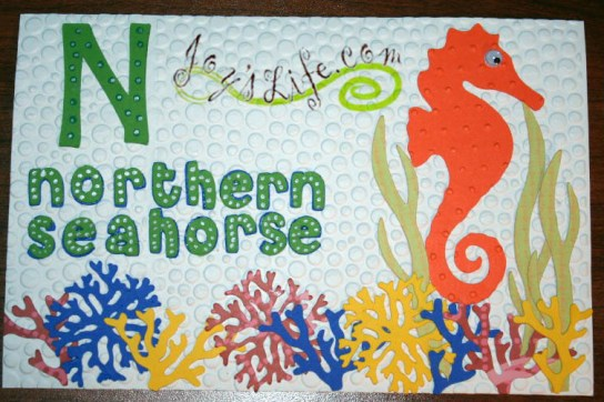 Yes, Northern Seahorse is a Real Thing!  It's um...from the North.