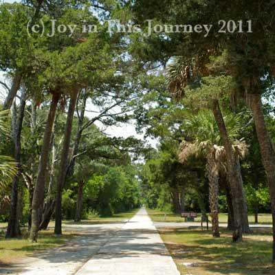 the road to Atalaya