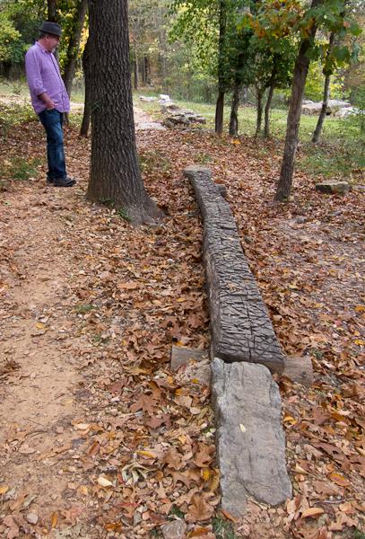 Log at Crystal Bridges Museum of American Art