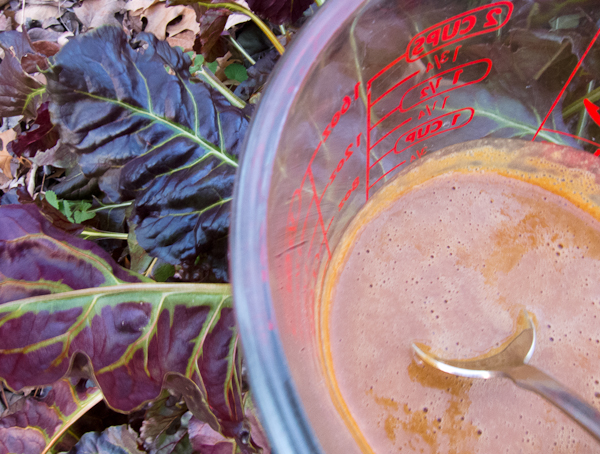 Photo of peanut sauce in 2 cup measuring cup in garden beside swiss chard