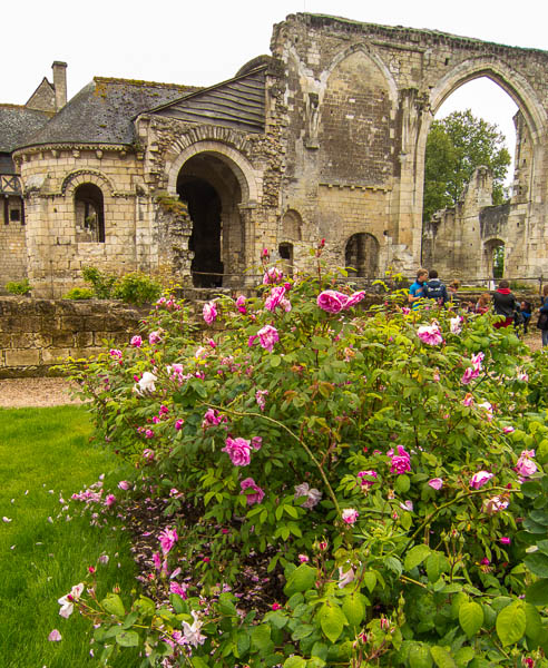 photo of rose in front of church ruins at Saint-Cosme Priory