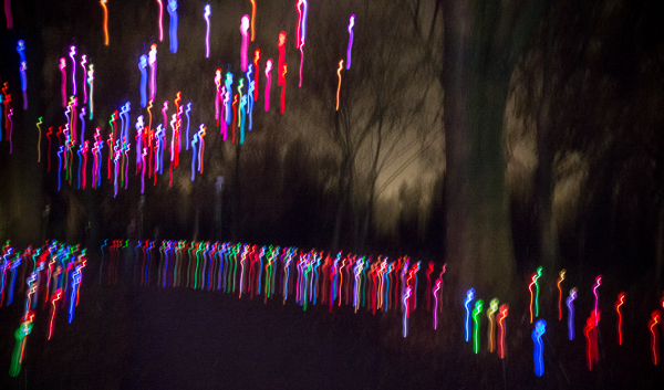 Brightly colored lines with dark shadowy trees in the background