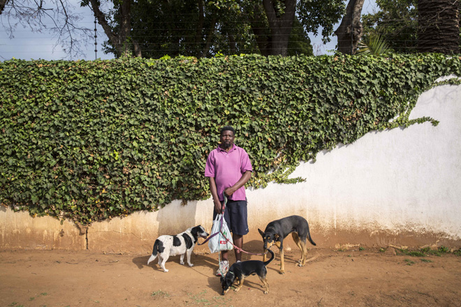 (Themba with Dabu-O Pehast and Mia High Road Orchards 2014) Themba Dlamini, with Diabolo, Picasso and Miya
