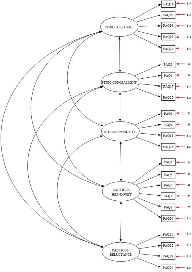 Psychometric Evaluation of the Pain Attitudes
