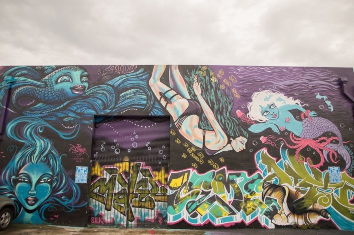 Winwood Walls Miami-4