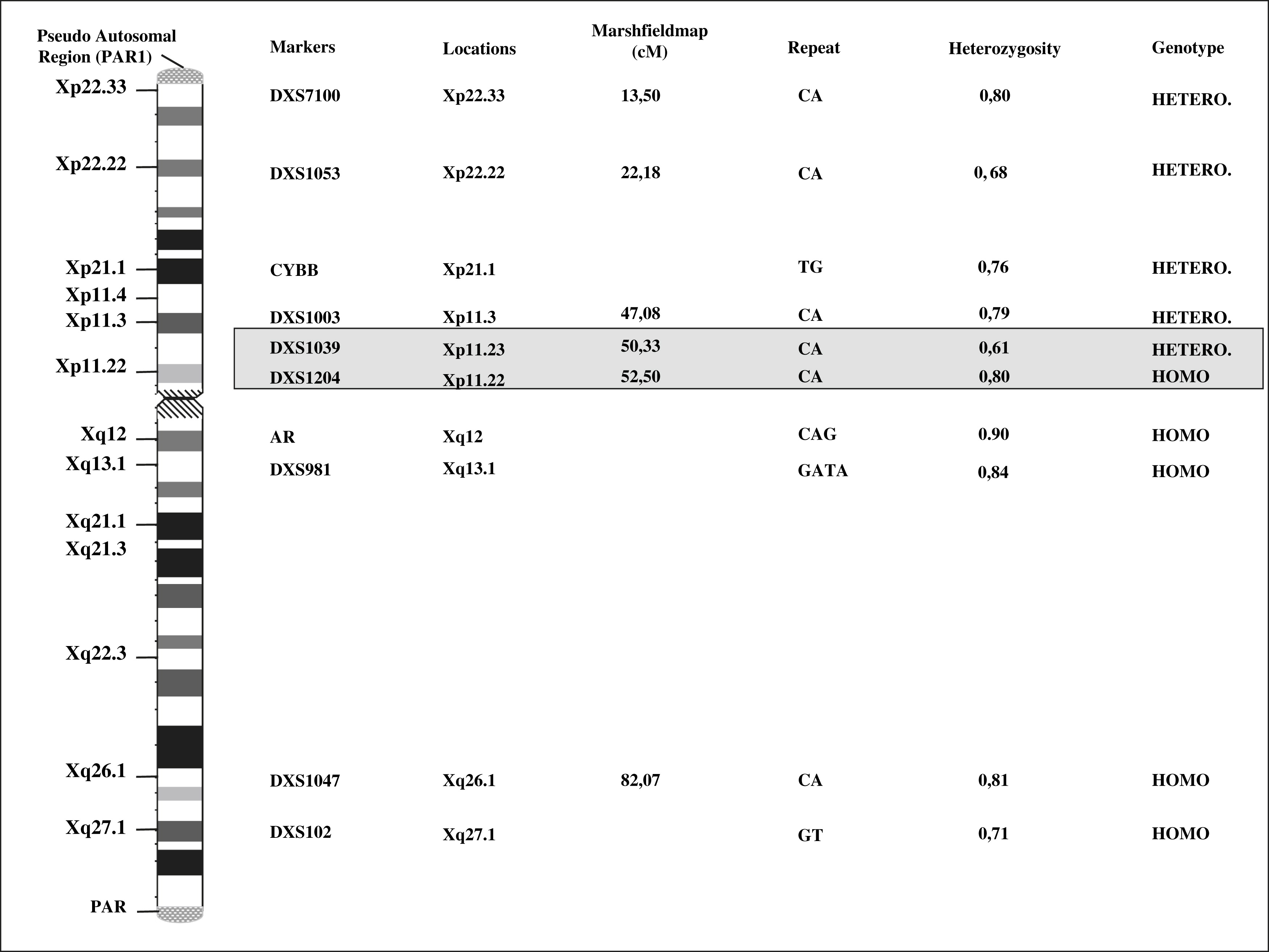 Molecular Stu S Of A Patient With Complete Androgen Insensitivity And A 47 Xxy Karyotype