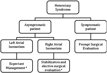 Heterotaxy syndrome and malrotation: Does isomerism