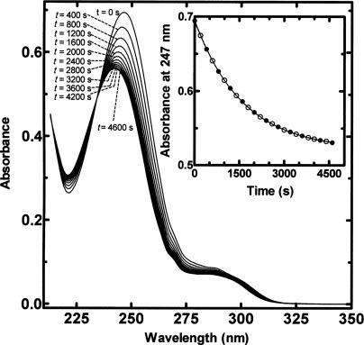 Kinetics and Mechanism of the Base-Catalyzed Rearrangement