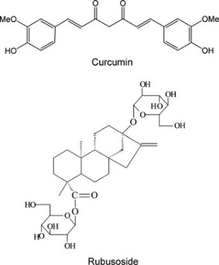A Novel Solubility-Enhanced Curcumin Formulation Showing