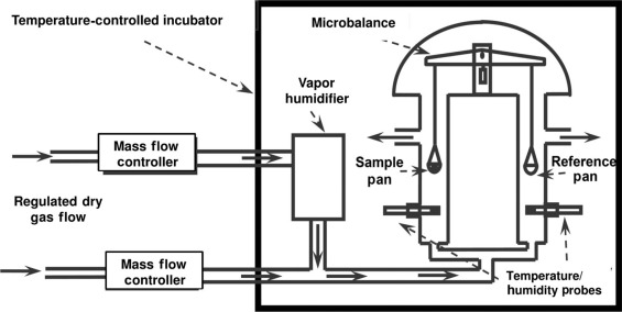 Dynamic Vapor Sorption as a Tool for Characterization and