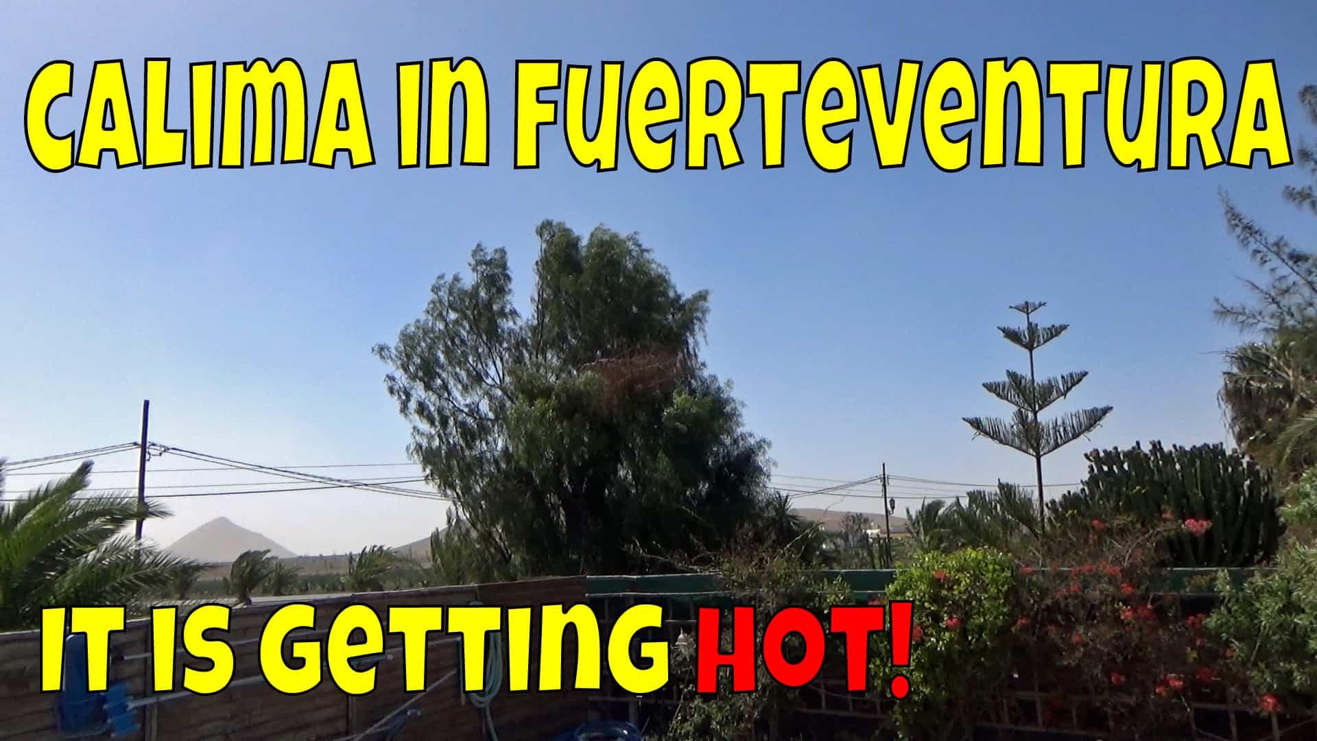 Fuerteventura Calima