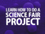 Overview: How to Do a Science Fair Project