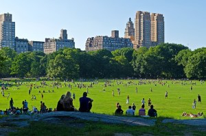 Centar Park - moving to Manhattan as a single parent will give you the chance to enjoy it every day