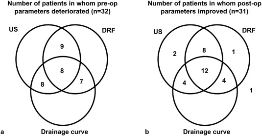 Hydronephrosis severity score: an objective assessment of