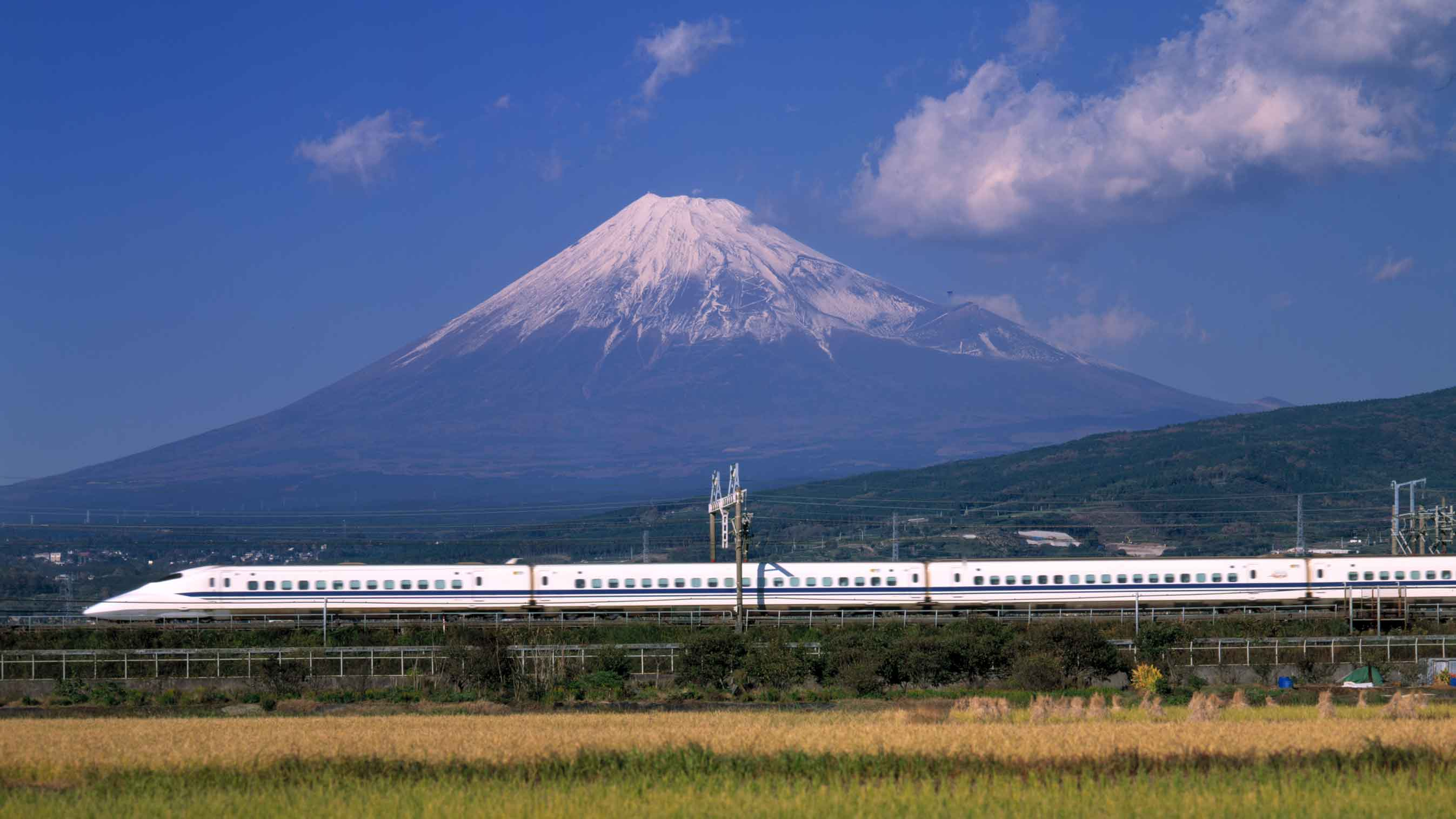 Japan In 7 Days Travel Itinerary