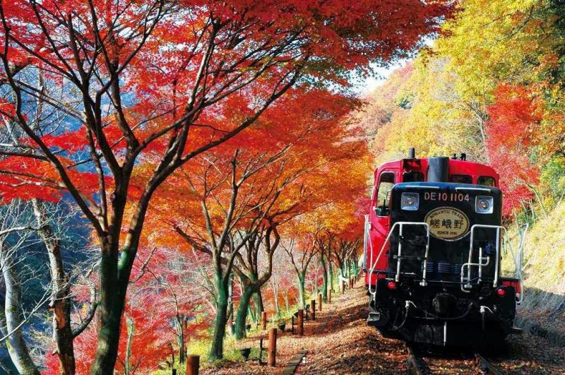 Fall Simply Southern Wallpapers Autumn Colors In Japan 2020 Fall Foliage Forecast Japan