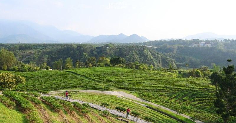 收起手機,放掉煩憂我們這就出發找茶。南投縣茶葉種植面積廣、總類多,也因觀光資源豐富吸引各地旅人,買茶、品茶、體驗茶文化,不僅為旅遊打開全新型態,更認識「茶」原來與生活是如此親近、如此純粹,用一個平靜的心沖泡,遠望山林,就會很快樂滿足。