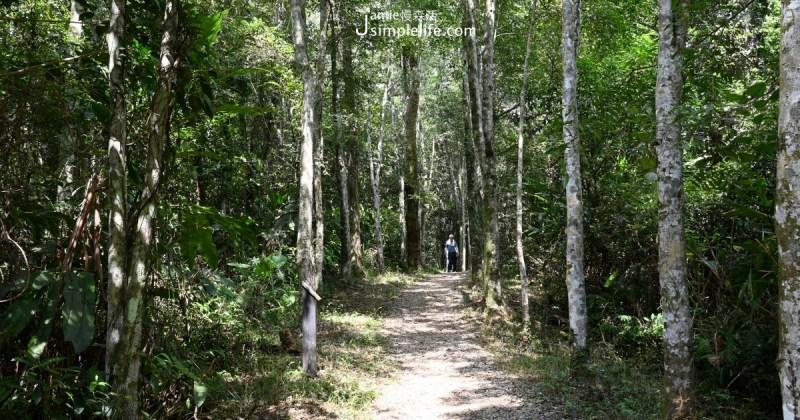 拳頭姆自然步道,位於宜蘭三星鄉境內天送埤地區,全長約1.8公里,海拔300多公尺,因山頭小,外型好比拳頭一般,得此名。這裡屬烏心石造林地,其環狀路線起伏不大,但多有烏心石鋪設木頭土階,會稍感疲憊,大致上步道平緩好走。緩步健行一圈約1.5小時即可走完,之後還能順遊天送埤車站,清水地熱公園,煮蛋、煮玉米,泡泡腳補充體力。