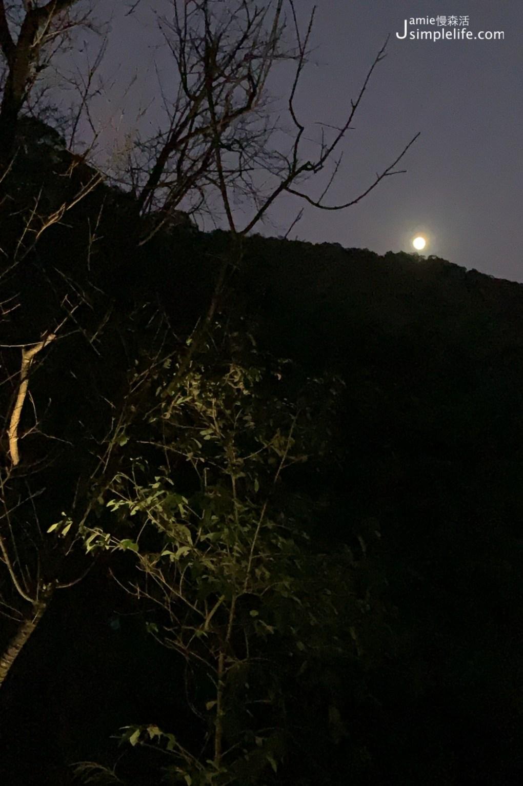 陽明山蒙馬特影像咖啡 裝飾偏甜的用餐環境與氛圍 夜晚樣子月光