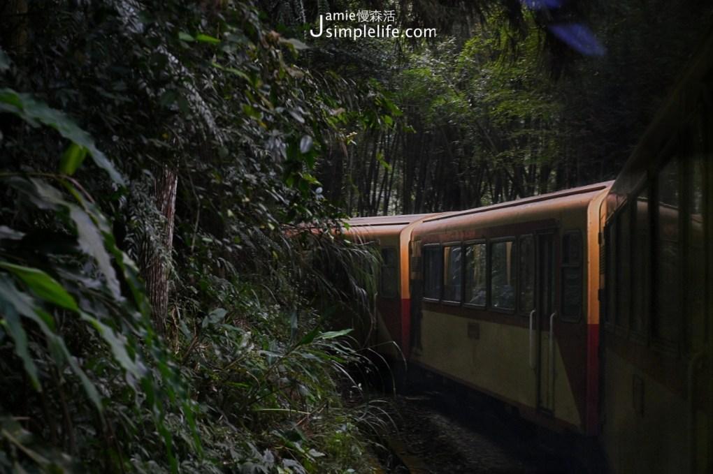 前進嘉義,世界文化遺產「阿里山森林鐵路」  阿里山林鐵山林景色