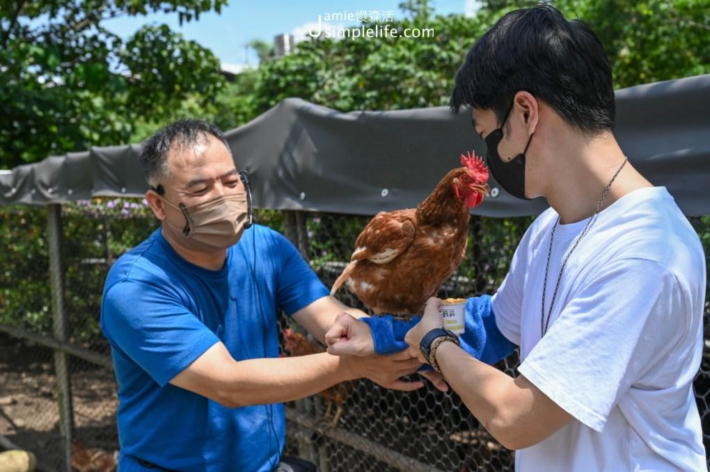 台中「新社百菇莊」雞舍前跟雞互動
