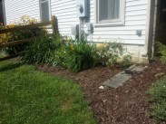 After clean up and weeding service