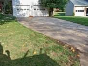 After Leaf Removal in Rockville