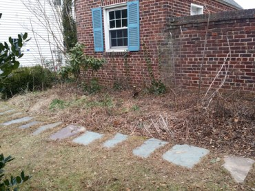 Before Clean Up and Mulching in Silver Spring