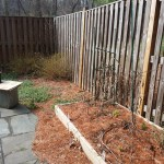 Before Clean Up and Mulching in Montgomery Village