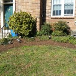 After Clean Up and Mulching in Germantown Maryland