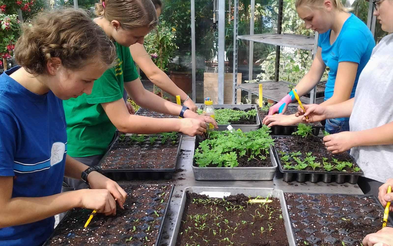Fachrichtung Zierpflanzen  JSZE  JardinSuisse