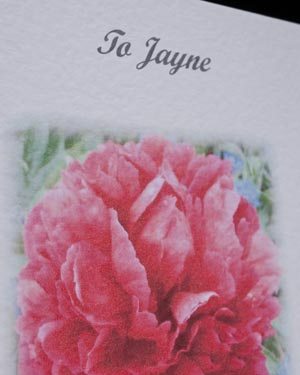 Peony - Birthday Card Closeup - Ref P122