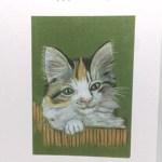 Kitten Artwork Card - Ref 208