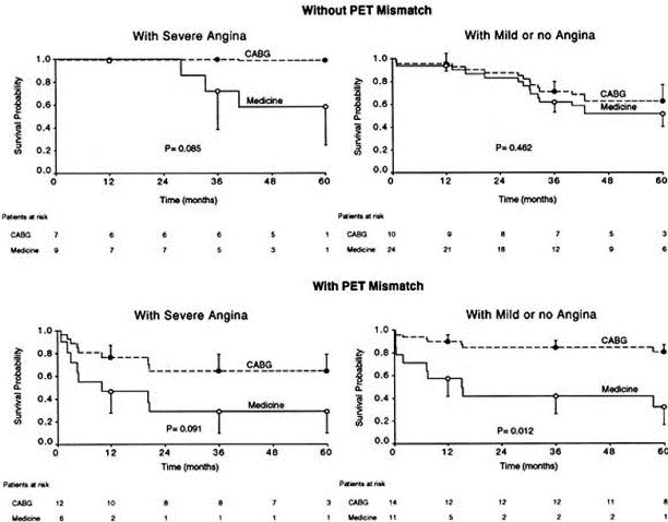 Long-term survival of patients with coronary artery