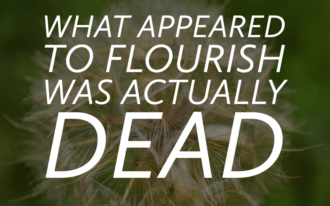 What appeared to flourish was actually dead