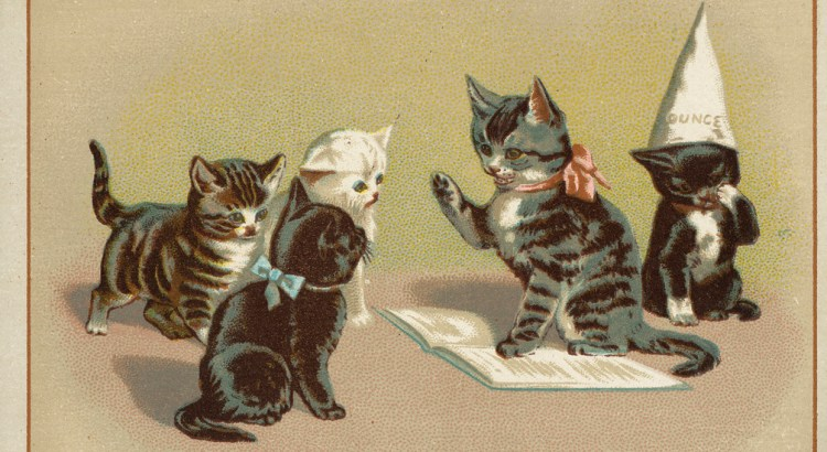 Five cats, one sitting with a dunce cap while one reads from a book to the other three.