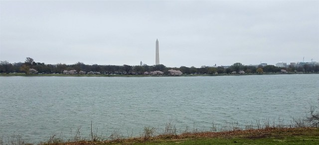 Washington Monument - 03262017